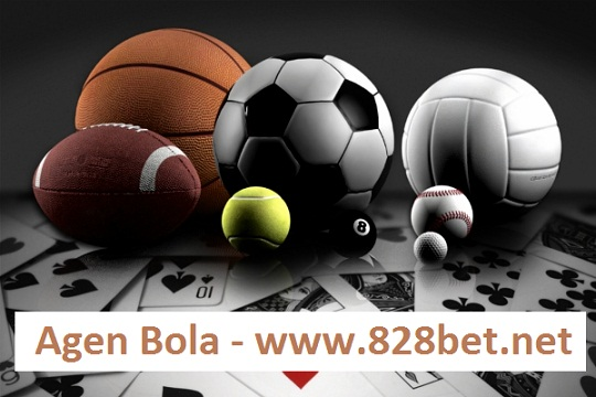 bets on sports online with 828bet.net