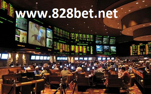 sports betting statistics 828bet.net